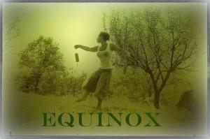 equinox copy