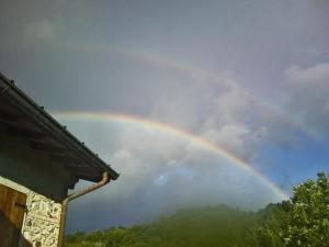 rainbowcasale